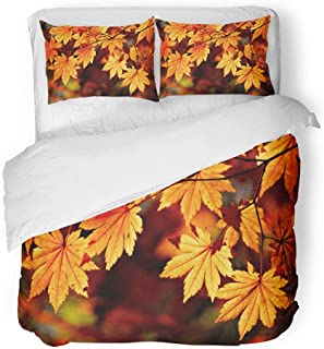 Emvency Bedding Duvet Cover Set Full/Queen (1 Duvet Cover + 2 Pillowcase) Brown Fall Autumnal Colored Leaves Maple Orange Canada Leaf Landscape Scene Autumn Hotel Quality Wrinkle and Stain Resistant