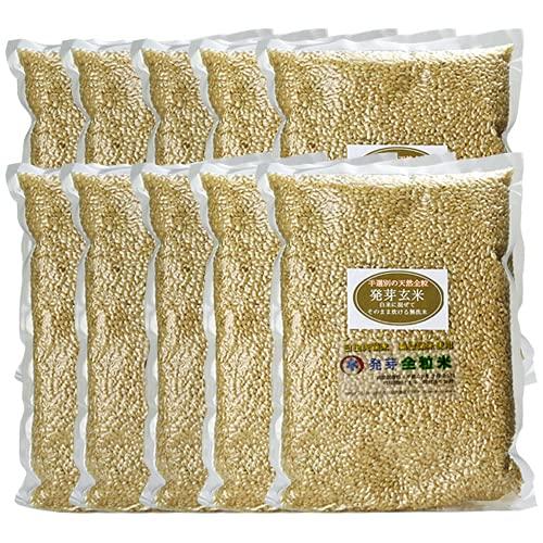 スタリオン日田 大分県産 無洗米 手作り発芽玄米 10kg (真空パック1kg×10袋) 準無農薬 (減農薬)