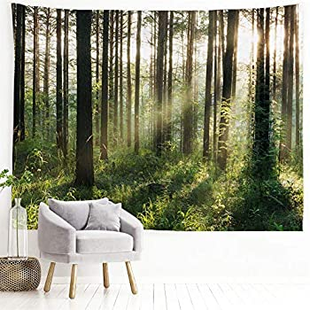 PROCIDA Home Tapestry Wall Hanging Nature Art Polyester Fabric Tree Theme Wall Decor For Dorm Room Bedroom Living Room Nail Included - 90 W x 71 L  230cmx180cm  - Sunlight Forest