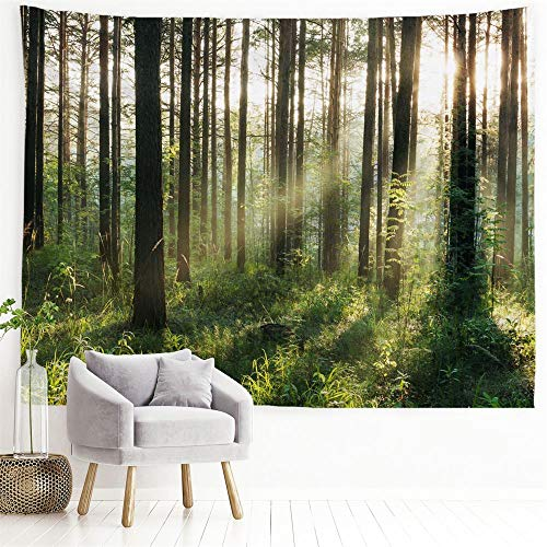 PROCIDA Home Tapestry Wall Hanging Nature Art Polyester Fabric Tree Theme, Wall Decor for Dorm Room, Bedroom, Living Room, Nail Included - 90