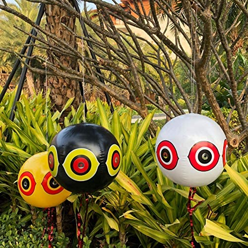 Top 10 Best duck repellent for pool Reviews