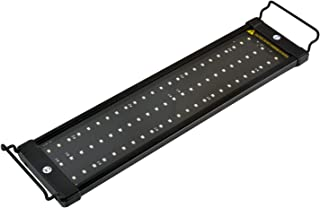 Best Fluorescent Light For Aquarium Plants [2020]