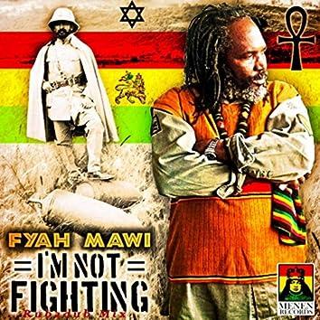 I'm Not Fighting (Rubadub Mix)