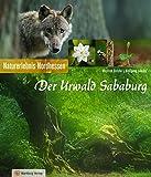 Der Urwald Sababurg: Naturerlebnis Nordhessen (Farbbildband)