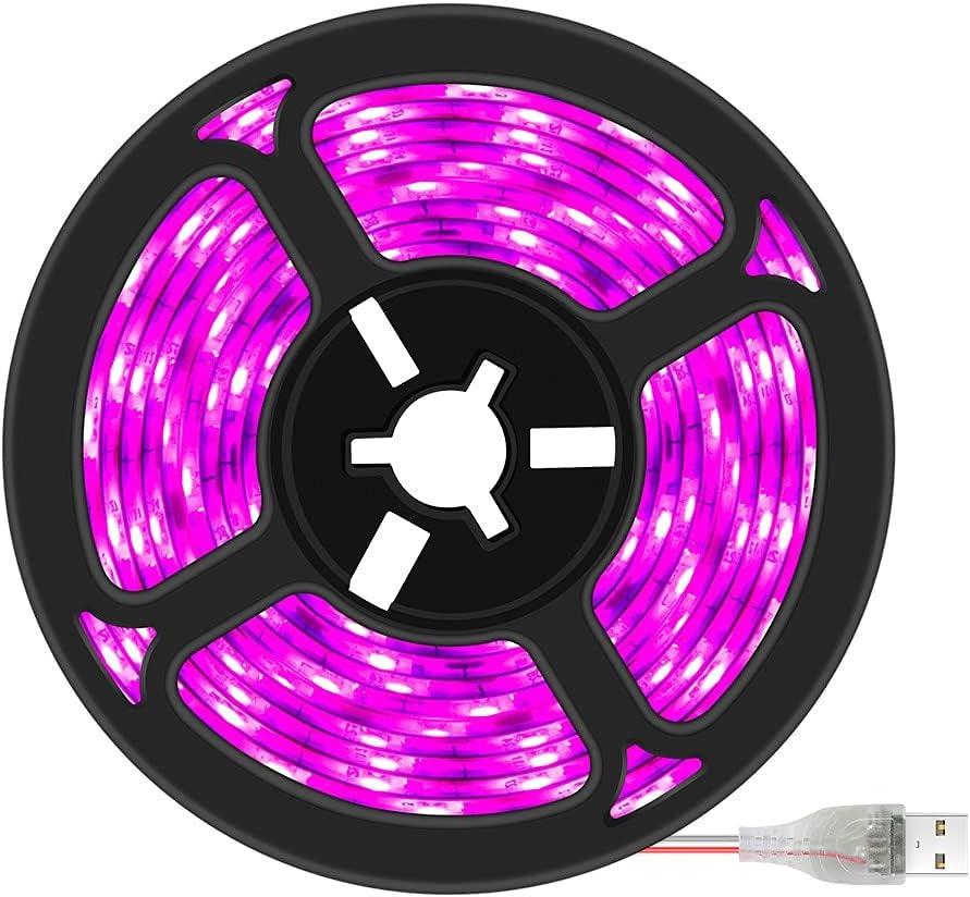 Bargain WHEEJE LED Lamp for specialty shop Plants Grow Light Spectrum USB Full Lig