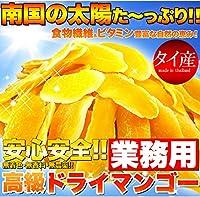 無着色・無香料 安心安全なマンゴー お試し 高級ドライマンゴー100g