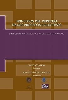 Principios del derecho de los procesos colectivos: Principles of the law of aggregate litigation (Spanish Edition)