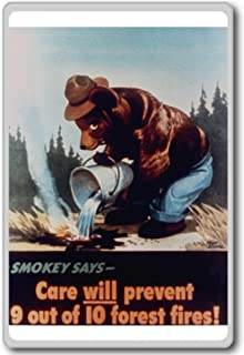 Smokey The Bear, Care Will Prevent 9 Out Of 10 Forest Fires - Motivational Quotes Fridge Magnet