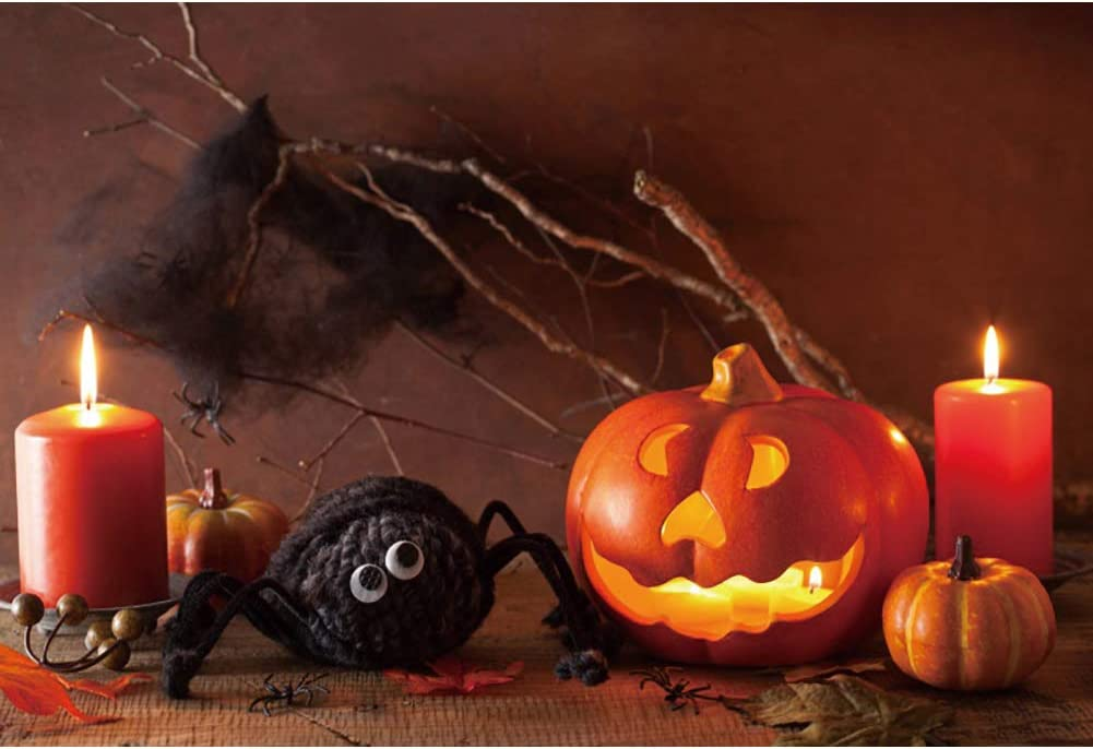 DaShan 14x10ft Horrible Halloween Backdrop Scary Spider Witch Wizard Sorcerer Theme Halloween Party Photography Background House Interior Pumpkins Lamp Halloween Celebration Decor Photo Prop