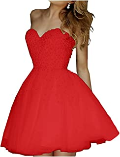 low priced 4eb94 356a1 Amazon.it: vestito corto in tulle - Rosso / Vestiti / Donna ...