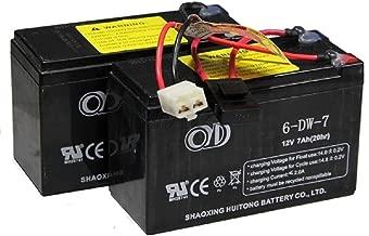 Razor 24 Volt 7Ah Battery Pack (Dual 12 Volt 7 Ah) for MX350 (V9+) | MX400 | Pocket Mod | Dirt Quad | Dune Buggy | Ground Force Drifter | GF Go Kart (V13+) | PR (V7+)