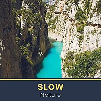 # Slow Nature
