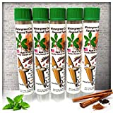5 Pack of Wintergreen Cinnamon Toothpicks in Tubes And Hanging Resealable Bag