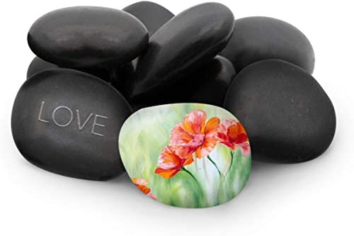 """discount Royal Imports Large Flat Painting Decorative Ornamental Rocks River Pebbles for Landscaping, Plants, Home Decor and Art, 9-12 Pcs in outlet sale Netted high quality Bag (6 Lbs), Black 3""""-3.5"""" online sale"""
