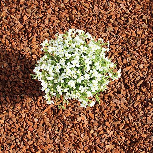 Terra-Discount Premium Pinie 120 Liter (2 x 60 Liter) mittel, Körnung 8-15 mm, Pinienrinde, Pinienborke, dekorativer Bodenbelag