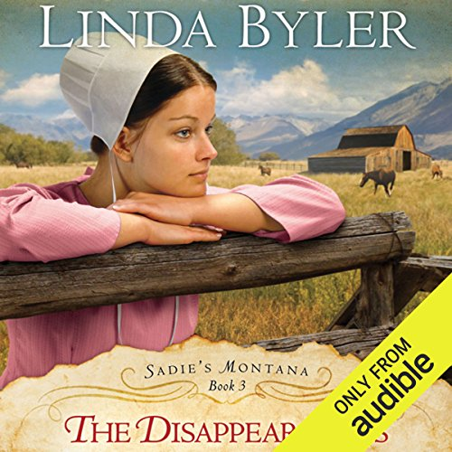 The Disappearances audiobook cover art