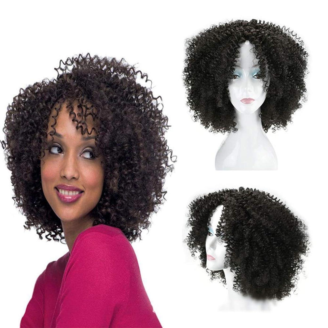 違法アプト勢いYrattary 16インチ変態カーリーブラック爆発ヘッド女性のアフリカの小さな巻き毛毎日コスプレパーティードレス小さな巻き毛のかつら (色 : ブラック)