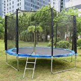 MaxKare 12FT Trampoline for Kids Recreational Trampoline with Enclosure Safety Net Jumping Mat Spring Cover Padding Trampoline Ladder Trampoline Fitness Equipment for Kids Adults Outdoor Use