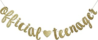 FOZEE Official Teenager Banner Sign for 13th Birthday Party Decorations 13 Years Bunting Garland Photo Prop Backdrop