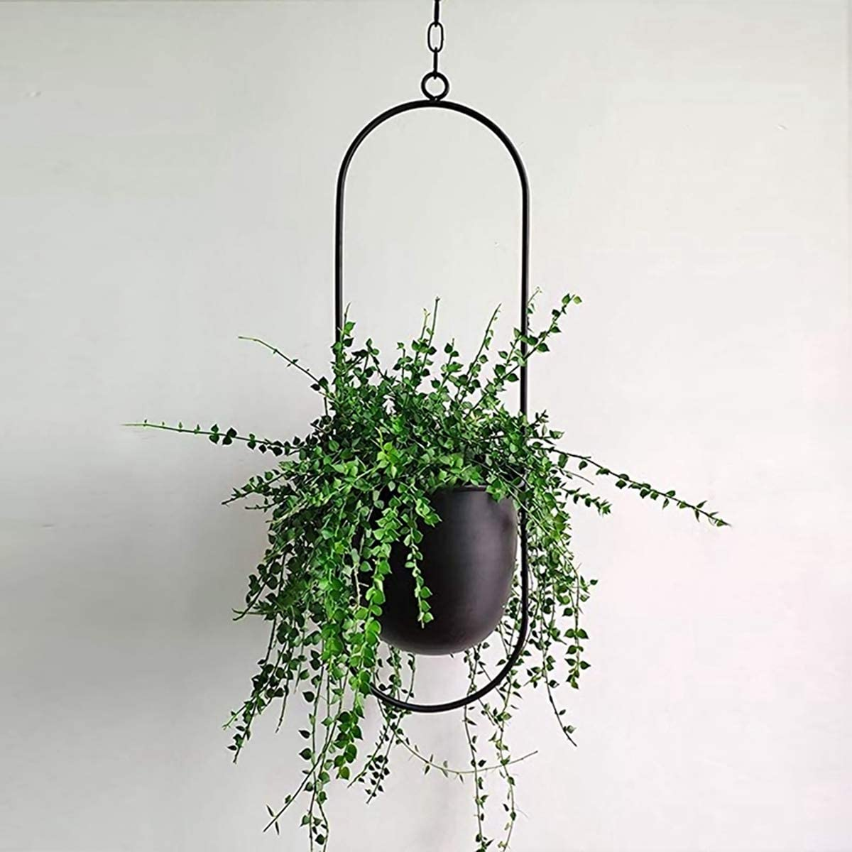 Discount is also underway SPDD Hanging Planters for Manufacturer OFFicial shop Indoor and Plants a with Outdoor Hooks
