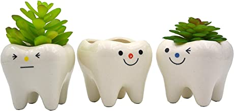 ceramic tooth shaped planter
