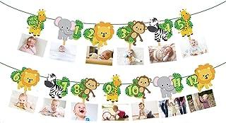 Safari Jungle Animal 1st Birthday Photo Banner Newborn to 12 Month Display Milestone Wild One Safari Forest Animal Themed ...