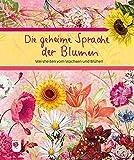 Die geheime Sprache der Blumen: Weisheiten vom Wachsen und Blühen (Eschbacher Geschenkbuch)