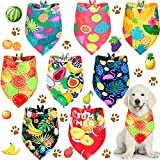 8 Pieces Pet Summer Bandanas Cute Hawaii Dog Scarf Durable and Washable Pet Triangle Bibs Adjustable Rain-Forest Dog Scarf Accessories for Pets (Fruit Patterns, M)