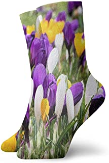 Tammy Jear, Crocus Calcetines cortos de flores grandes para adultos Calcetines divertidos para yoga Senderismo Ciclismo Correr Fútbol Deportes