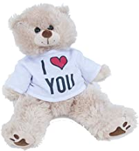 I Love You Teddy Bear Stuffed Animal, Romantic Long Distance Relationship Gifts for Him or Her, Gift for Valentines Day, Birthday, Anniversary (16