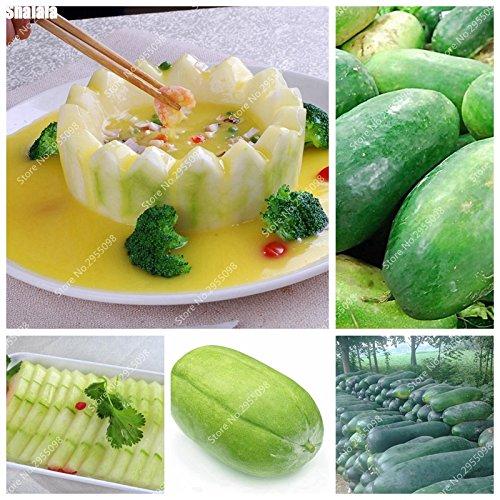 25pcs / sac Impoted Wax Gourd Graines Outdoor Bonsai non-OGM biologique Plante en pot de légumes pour Mini Décor de jardin