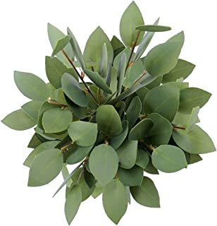Best cheap greenery for wedding Reviews
