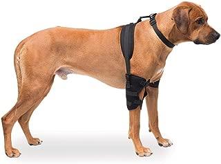 Caldera Pet Therapy Wraps - Carpal & Elbow