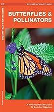 Butterflies & Pollinators: A Folding Pocket Guide to Familiar Species