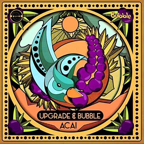 Upgrade & Bubble