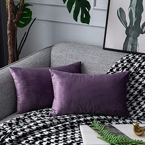 UPoPo Juego de 2 fundas de cojín de terciopelo decorativas, de un color, suaves, para sofá, dormitorio, salón con cremalleras, violeta claro, 30 x 50 cm