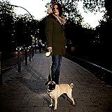 flexi Roll-Leine Neon Reflect S Seil 5 m Neon/schwarz für Hunde bis max. 12 kg - 5
