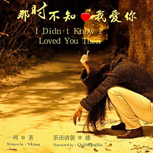 那时不知我爱你 - 那時不知我愛你 [I Didn't Know I Loved You Then] audiobook cover art