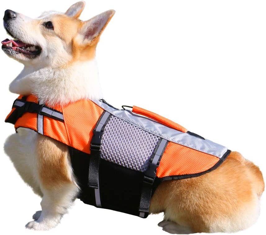 DHY Mesh Dog Life Jacket Lightweight Bargain with Suitabl Super popular specialty store Handle Rescue