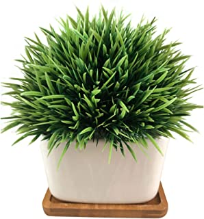Fake Plant for Bathroom/Home Decor, Small Artificial Faux Greenery for House Decorations (Potted Plants) (Green Grass with Tray)