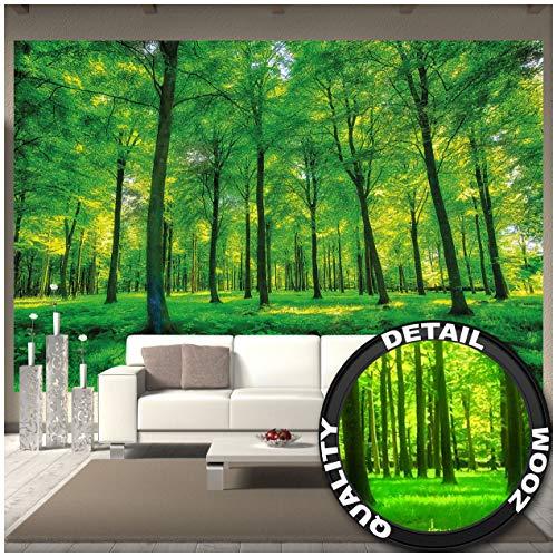 GREAT ART Fototapete – Bäume – Wandbild Dekoration Natur pur Landschaft Wald Lichtung Sommer Entspannung Sonne Pflanzen Flora Forst Farne AST Foto-Tapete Wandtapete (336 x 238 cm)
