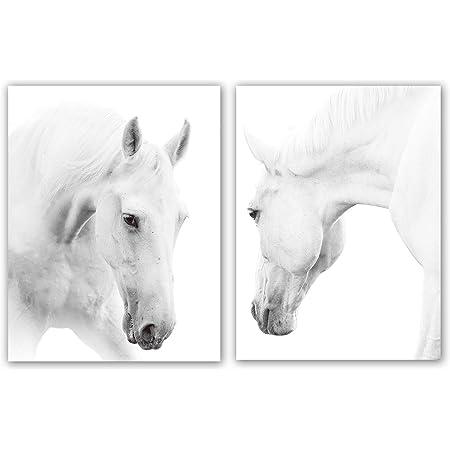 White Horses Wonderful Art for Wall White Animal Large Canvas Decor Nature Modern Art Winter Pictures Decor Equestrian Run Artwork