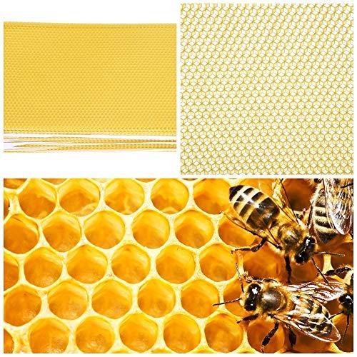 Delaman Hojas de Base de Abeja Beekeeping Nest Box Foundation Cera de Abejas Hojas de Nido de Abeja Herramientas para Apicultor 30 Piezas