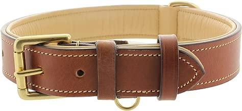Viosi Leather Padded Dog Collar - Made of Genuine Kingston Luxury Leather