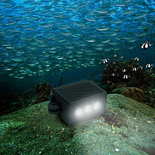Luz de video LED impermeable con adaptador y tornillo for GoPro HERO7 / 6/5/5 Session / 4 Session / 4/3 + / 3/2/1, Xiaoyi y otras cámaras de acción (Negro) Calidad sin preocupaciones ( Color : Black )