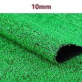 YNGJUEN 10 mm Kunstrasens gefälschte Plastik Rasen Kunstrasen Baumschule Dachterrasse for die Außenwand dekorativen Teppichschoner (Size : 2mx11m)