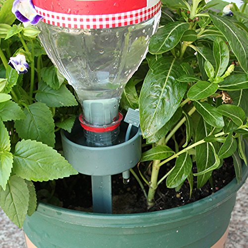 Beautyrain Dispositif darrosage Automatique 1pcs Verre arrosant Fleur Dispositif Irrigation Fleur Outils Jardin Verre Arroseur Arroseur Dispositif Oiseau Forme