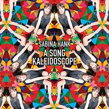 A Song Kaleidoscope