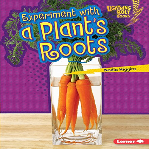 Experiment with a Plant's Roots copertina