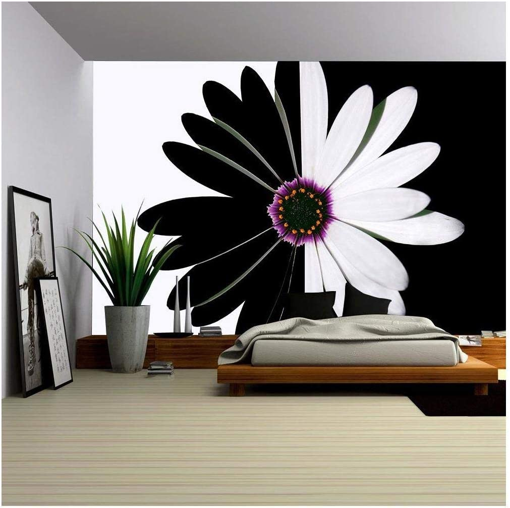 Self-adhesive Large Wallpaper wall26 Summer field with white daisies on blue sky Removable Wall Mural